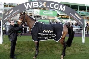 WBX Horse Racing